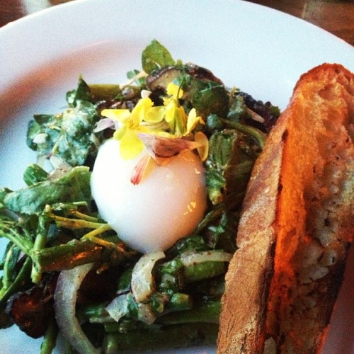 Warm salad of shiitake mushrooms, asparagus and watercress with a poached egg and flowers on top. Noble Rot is now in my top 5 restaurants in #pdx . #dinner #pdxeats #foodie (at Noble Rot)