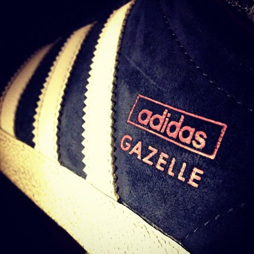 Adidas Gazelle. #adidas #kickspotting #sneakers #kicks #instakicks #instamood #weareverypair #loveyourshoes #nicekicks