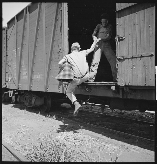 Rondal Partridge's photograph of freighthopping, Bakersfield, California, 1940