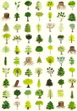 1000drawings:  Trees by Kelly Bastow