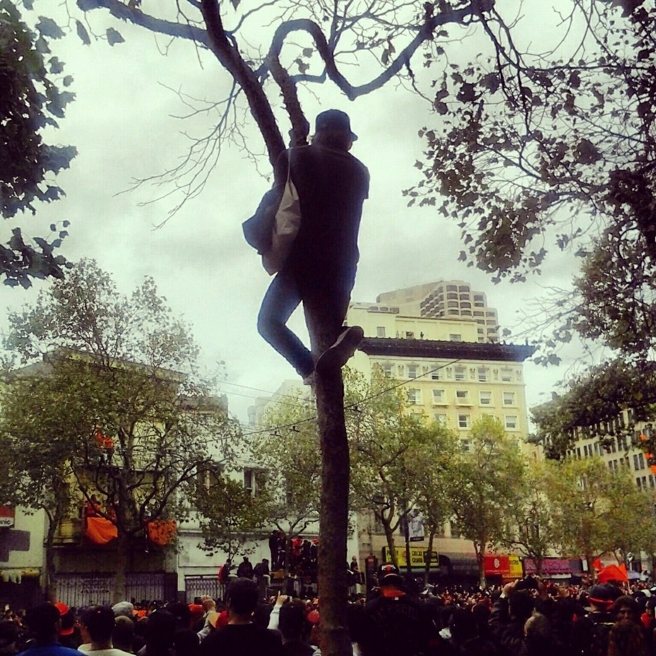 San Francisco Giants Parade! by erika echo
