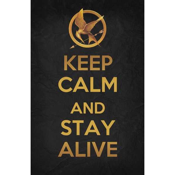 The Hunger Games Poster 02   (clipped to polyvore.com)