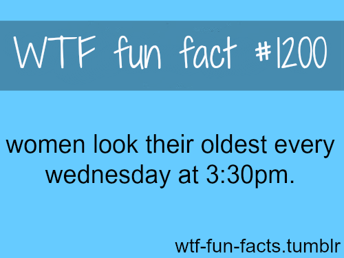 dating funny facts about women