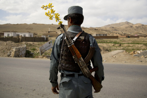 fotojournalismus:  An Afghan National Police officer mans a checkpoint on the outskirts of Maidan Shahr, Wardak province on May 15, 2013. [Credit : Anja Niedringhaus/AP]
