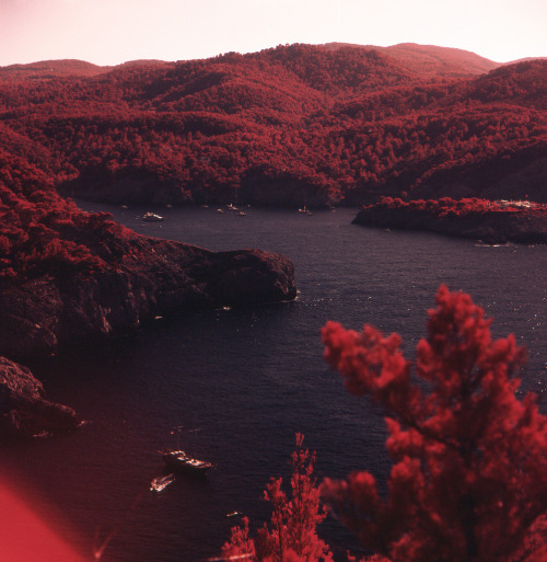 definitelydope:  Beniras bay (by Pinouls)