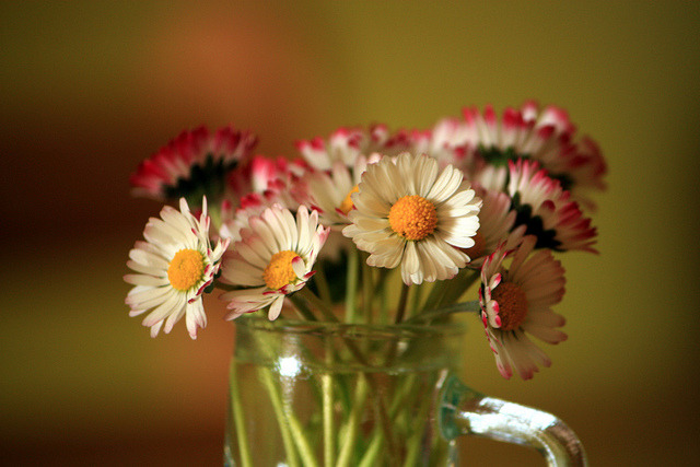 Petit bouquet pour VOUS by LILI296….. on Flickr.