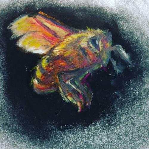 Took a little more time on this #sketch and used #chalkpastle and #colorpencil . #bumblebee #art