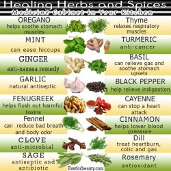 thespiritualvegan:  Healing Herbs and Spices