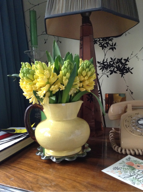 Finally, hyacinths! I love this time if year. There is so much to come and the flowers are all so scented. I think it's nature's way of getting us through these last weeks of winter.