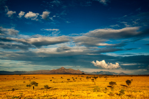An image of the Narus Valley, taken in Kidepo Valley National Park, Uganda. In the background you can see the Murongole Range and South Sudan in the far distance. - Photography by Christopher Kidd