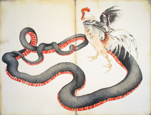 illustration-ilustracion:  Justin Gibbens Basilisk –2010, watercolor, gouache, ink, tea on paper.  40x52 inches
