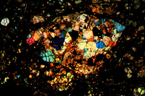 Microscopic Images of a Chondrules in Chondrite Meteorite Chondrites are stony meteorites that have not been modified due to melting or differentiation of the parent body. They formed when various types of dust and small grains that were present in the early solar system accreted to form primitive asteroids.. — Mila Zinkova