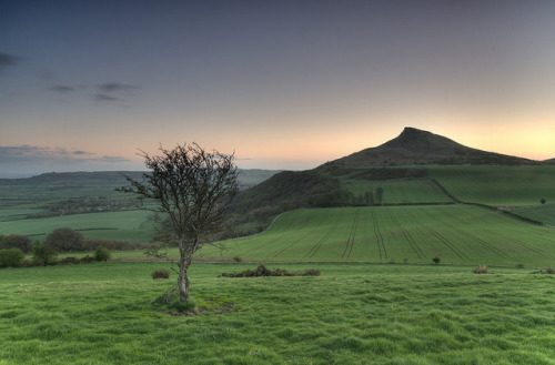 the-longroad:  Roseberry topping all a glow. by paul downing on Flickr.