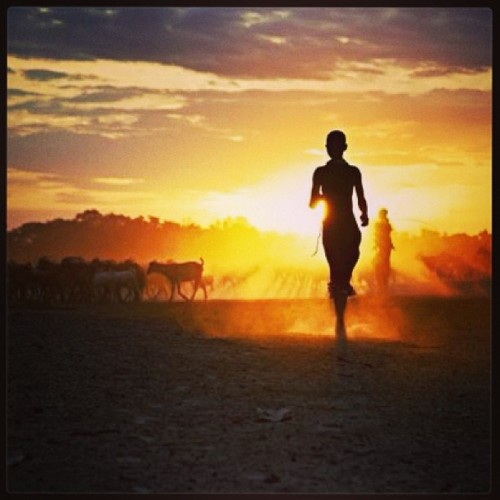 #run #woman #evening #power #energy #africa #desert