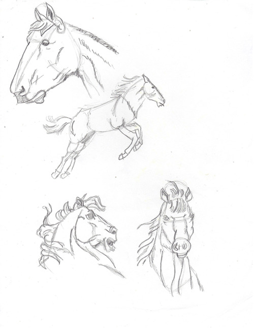 Horse SketchesGraphite on copier paper© Asad Badat This is a scanned image of sketches I made 8+ years ago following a step-by-step book of how to draw horses. Only two years ago did I realize drawing can be easier if one views the subject to be drawn as lines, shapes, and colors.