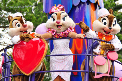 jubilation!~Chip・Dale & Clarice~