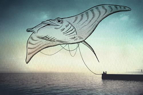lustik:  Oceanographies - Giulia Pex & Luca Broglia. Artists on tumblr Lustik: twitter   pinterest   etsy