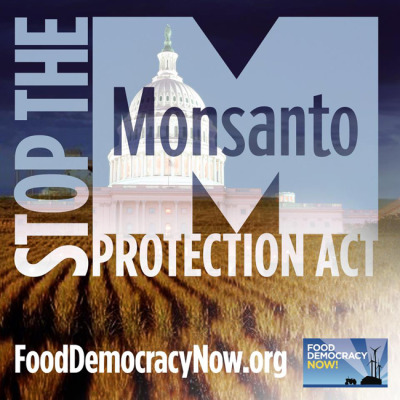 ecowatchorg:  President Obama Signs Monsanto Protection Act For the past year, family farm advocates and legal experts have fought to stop the Monsanto Protection Act, another special interest corporate giveaway that fundamentally undermines the federal courts' ability to protect family farmers and the environment from potentially hazardous GMO crops that have not been proven safe.