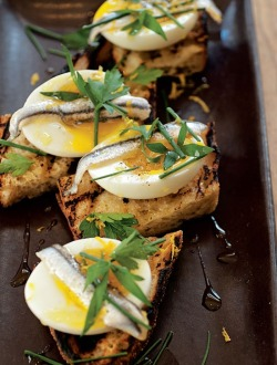 in-my-mouth:  Egg & Anchovy Crostini