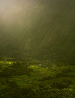 Waipio Valley (by Ahmed ElHusseiny)