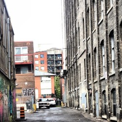 Been discovering interesting places in #Toronto like this #alleyway in #Spadina . #iphoneography