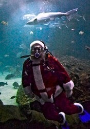 "Santa's Seaside WorkshopThe holiday ""Diving Santa"" program at the North Carolina Aquarium on Roanoke Island is set…View Postshared via WordPress.com"