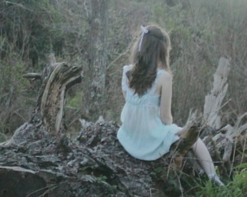 @WeHeartIt #forest#forestcore#cryptid#cryptids#cryptidcore#log#soft goth#soft grunge#grunge#grunge aesthetic#pale grunge#pale skin#desaturated#dainty#delicate#bow#pastel blue#dollcore#doll aesthetic#eerie#ghost aesthetic#spooky