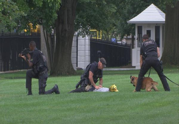 myutsuu:  pokemon-global-academy:  pokemon-global-academy:  According to multiple reporters who were on the scene, a man wearing a Pikachu hat and carrying a stuffed Pokémon jumped the White House fence today and ran across the lawn before being apprehended by Secret Service agents.  Source: Kotaku   FREE HIM!   son, you can't battle the American League Champion without all 8 badges