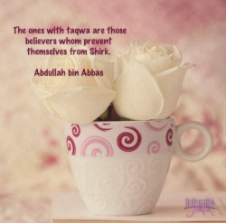 islamicgleams:  The Ones with Taqwa