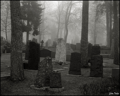 redwolf518:  Graveyard, Fog - 霧の霊園 by Jukka Vuokko on Flickr.