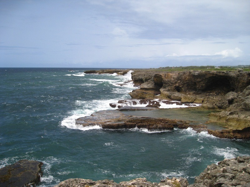 Above Animal Flower Cave along the northeastern coast of Barbados.