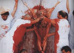 "vegan-girl:  Sign this petition!In June, the play ""Kunst"" by Hermann Nitsch will be performed on six days. One cow and three pigs will be slaughtered for the sake of ""art""! Please refuse to accept this! Animals are conscious beings and are not on this planet to entertain us. By signing this petition, you can help saving these animals lives and make clear, that this absurd act of cruelty should not be considered as art! That's why I started this petition!  Nitsch's work, which can be considered both ritualistic and existential, first drew attention in the early 1960s when he exhibited a skinned and mutilated lamb. The lamb was crucified against a white fabric-covered wall, with the entrails removed and displayed below a white table, splashed with blood and hot water. This was accompanied by Nitsch's ""Geräuschmusik"". Nitsch's subsequent work has incorporated many similar elements, often combining slaughtered animals, red fruits, music, dancing, and active participants. Nitsch juxtaposed slaughtered animal intestines with quasi-religious icons such as staged crucifixions, satirizing and questioning the moral ethics of atavistic religion and sacrifice. Currently his work is often discussed in the context of our culture's fixation with violence seen on the news, movie screens, and in popular video games. Correlations have also been drawn to many instances of the intersection of violence and culture. These performance works, which have become known as ""actions"" have become more and more elaborate over the years. This highly elaborate work is exemplified by the 6-Day Play, which Nitsch considered to be his pinnacle piece.Please, sign this petition and move it around!"