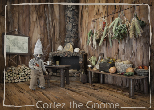 textless:  Meet Cortez.   Cortez the gnome is four inches tall and lives in a juniper tree in the west.  He loves his life in the wilderness, but it has been a long time since he last saw another gnome.  Could he be the only one? Cortez is the subject of Cortez the Gnome, a new picture book by James Orndorf (inlandwest) and Amadee Ricketts (me!).  The book is 800 words long and illustrated with photos by both of us.  I'm ridiculously proud of it.  But technically a book isn't a book until it's published, and this one isn't yet. We don't need money to finish the project.  It's finished.  And we don't need people to buy books.  They don't exist yet.  We just need the right person to see Cortez, and give him a chance with a mainstream publisher.  And since the world is very small in some ways, though less so if you're a gnome, I'm asking for your help getting him out there. If you like Cortez, pass him along.  If you'd like to see more about him, visit cortezthegnome.com or check out his recipes on They Draw and Cook.  And thank you!