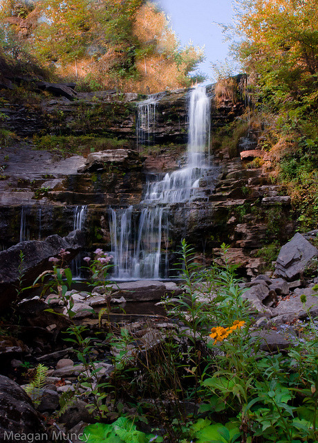 Oasis (Lansing Kill Falls) by 10mmm on Flickr.