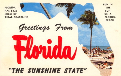 "bad-postcards:  FLORIDA HAS 8426 MILES OF TIDAL COASTLINE Greetings From Florida ""The Sunshine State"""