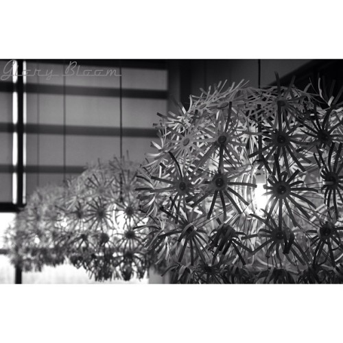 #light #bw #blackandwhite #ikea