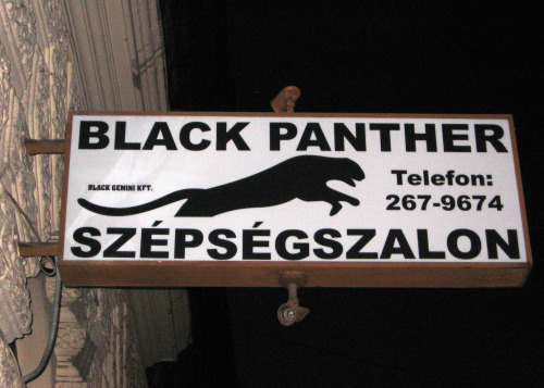 A sign for the Black Panther hair salon in Budapest, Hungary. I'm fairly positive that the hair dressers working there are or were not actually members of the Black Panther Party.