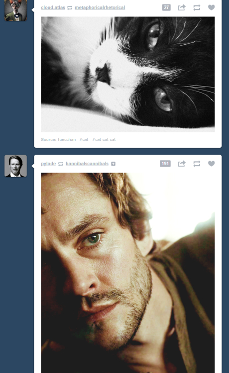 """you and me both, cat"", says Will Graham as he inevitably descends deeper into madness"