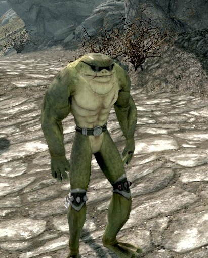 "retronauts:  astronomiee:  Battletoads mod for Skyrim  Modders, next time you start working on yet another Skyrim nude/sex mod, remember this image and think to yourself, ""I should aspire to something better."""