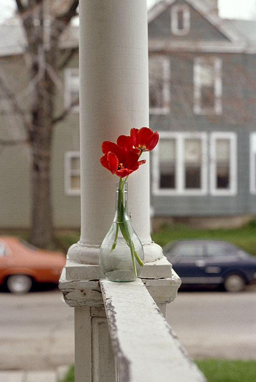 Red Tulips, Ft. Wayne, Indiana  1979 © greg reynolds photography from 'Jesus Days, 1978-1983'  Photo Book Project