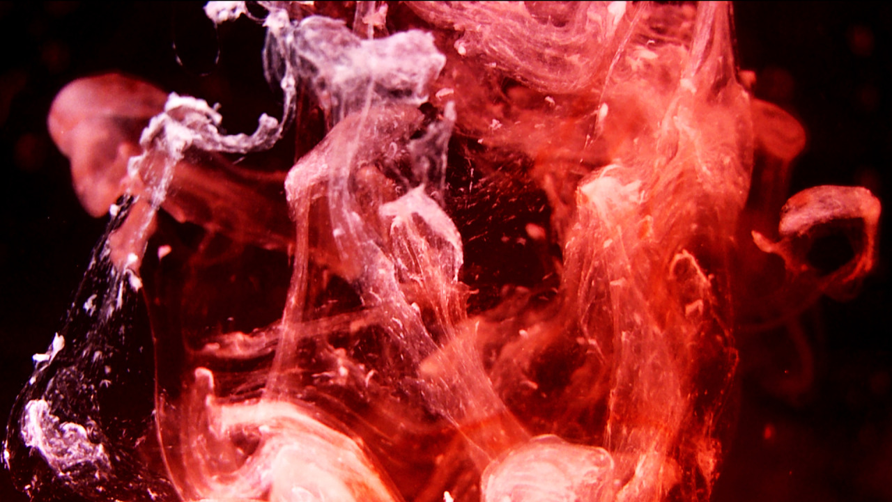 "Still from ""Stasis"" by Taxiplasm"