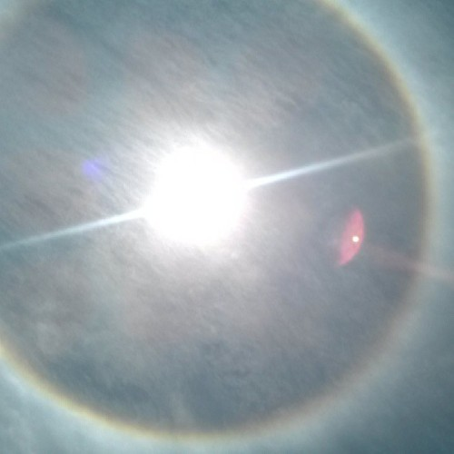 Rainbow around the sun!  Everyone look up!