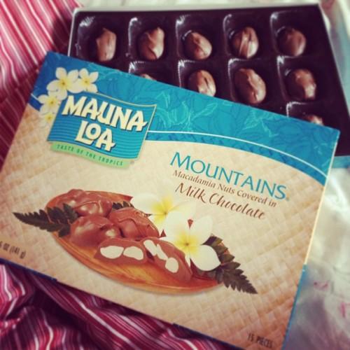 Eating chocolate in bed by myself on this cold, rainy day. 😊💩 #chocolate #macadamia #maunaloa #piggy #omnomnom #food #yummy #loner #cold #luckyilivehawaii #kauai #hawaii #cravingsallday