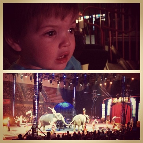 An afternoon at the circus with friends.