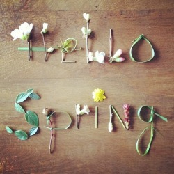 secretdreamlife:  Hello Spring… http://secretdreamlife.tumblr.com