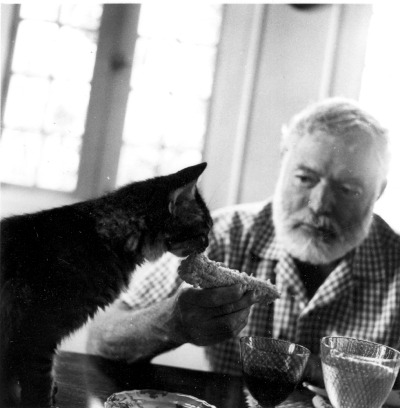 Ernest Hemmingway feeding his cat Cristobal corn at his home in Cuba.