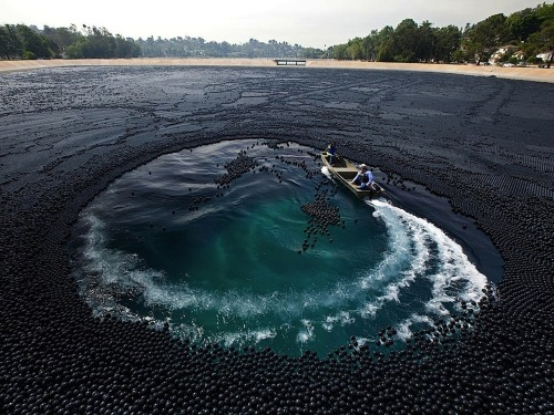 400,000 Balls Cover Ivanhoe Reservoir by Gerd Ludwig In 2007, the Department of Water Protection in Los Angeles detected high levels of bromate, a carcinogen that forms when bromide and chlorine react with sunlight, in Los Angeles's Ivanhoe Reservoir. Bromide is naturally present in groundwater and chlorine is used to kill bacteria, but sunlight is the final ingredient in the potentially harmful mix. The 102-year-old facility serves about 600,000 customers downtown and in South Los Angeles. When the Department of Water Protection realized the problem, they began construction of a new underground reservoir in Griffith Park, but while the new facility was being built they had to determine a way to keep the sunlight out of the water, so they used 400,000 plastic balls which resulted in this spectacular spectacle.  Artists: | Website | [via: Amusing Planet & Messy Nessy]