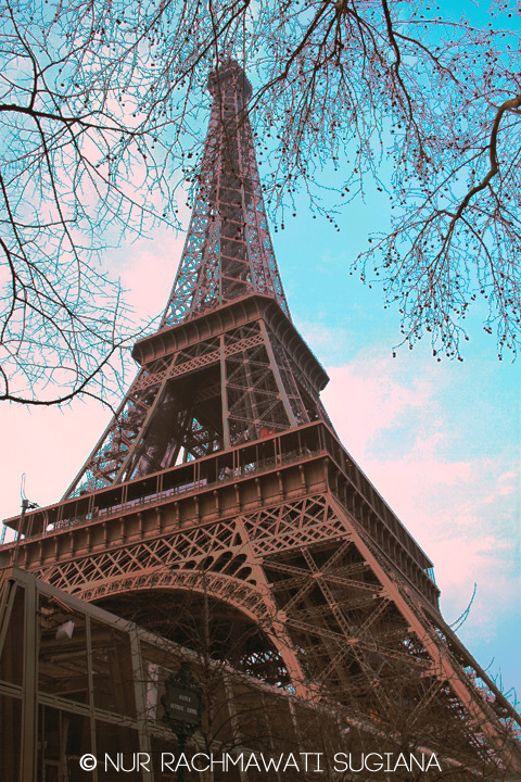 Eiffel Tower, Paris - France (© N R Sugiana)