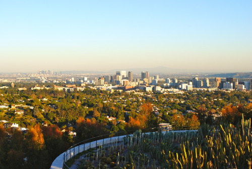 #285 Los Angeles, CA - A view from the Getty Museum