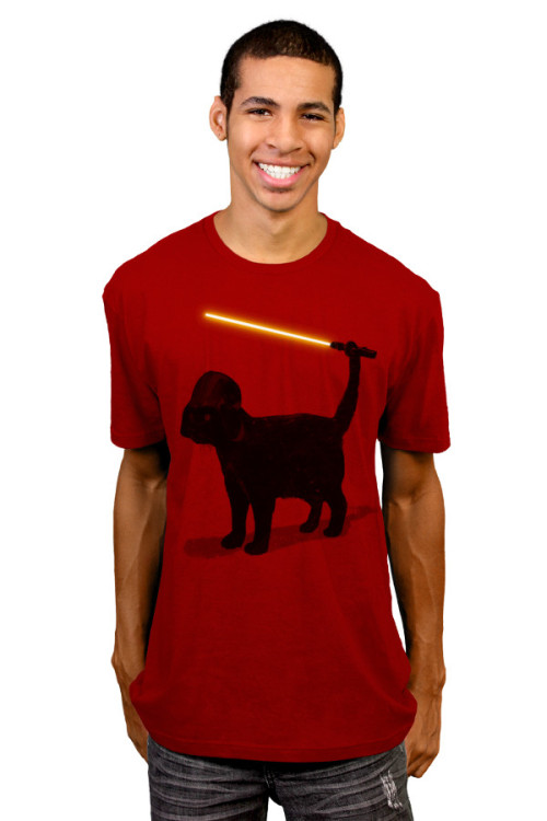 Available here - http://www.designbyhumans.com/shop/cat-vader-t-shirt/11707/